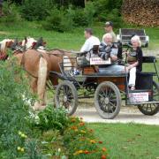 Direction les Étangs de Crosagny 18.07.12