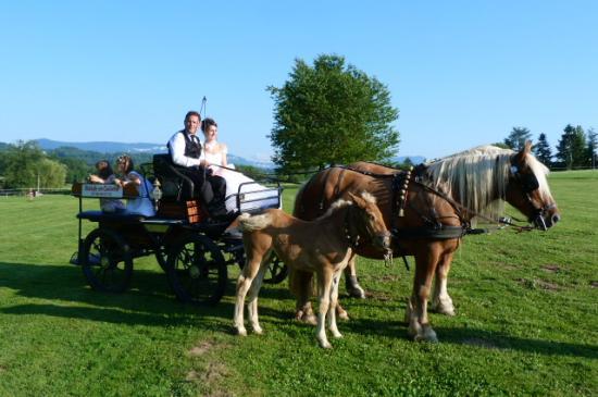 Mariage a la fraicheure de l etang 06 07 13 35